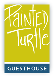 painted-turtle-logo